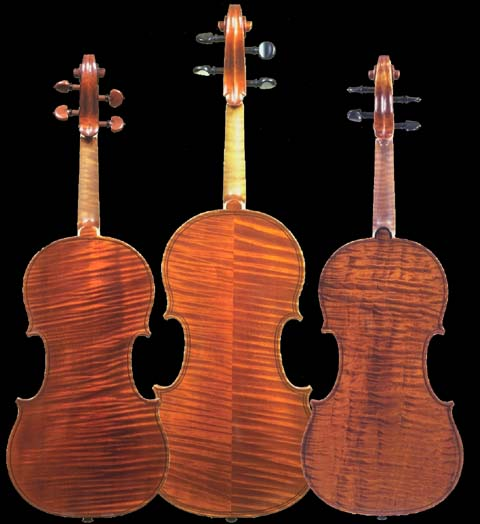 THE PRIMARY WOODS USED IN VIOLIN MAKING